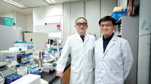 林漢華教授(右)和林潤華副教授稱,GREAT課程設計創新,帶給學生全新學習體驗,畢業後出路選擇廣。